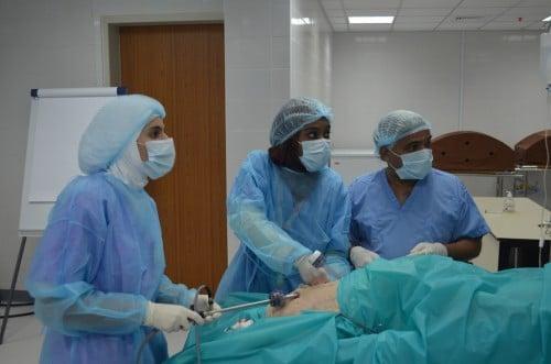 Abb. 5: Trainingskurs laparoskopische Chirurgie für Residents