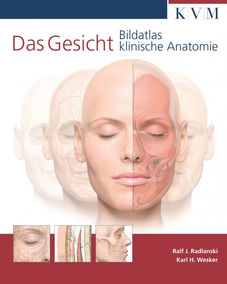 Rezension: Das Gesicht – Bildatlas klinische Anatomie - BDC|Online
